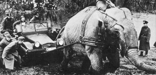 Интересные исторические фотографии Attachment