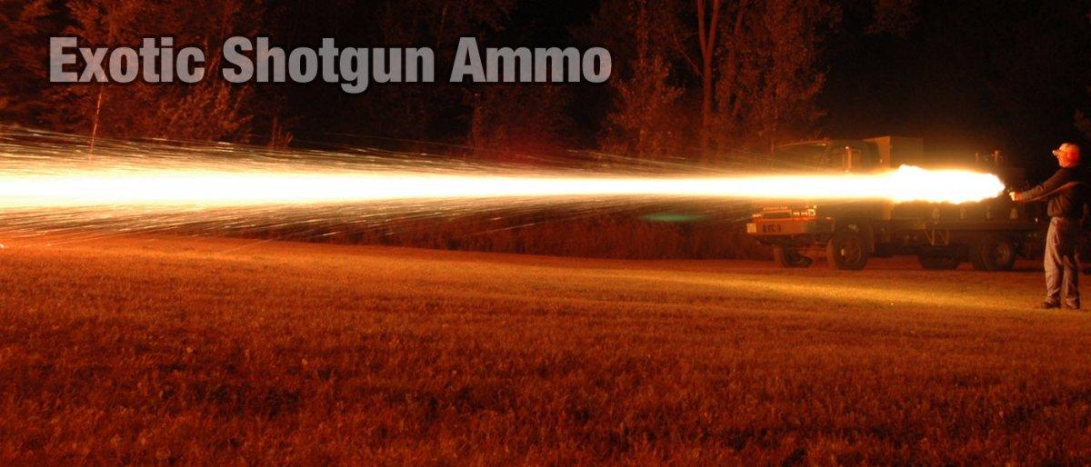 3-exotic-shotgun-ammo.jpg