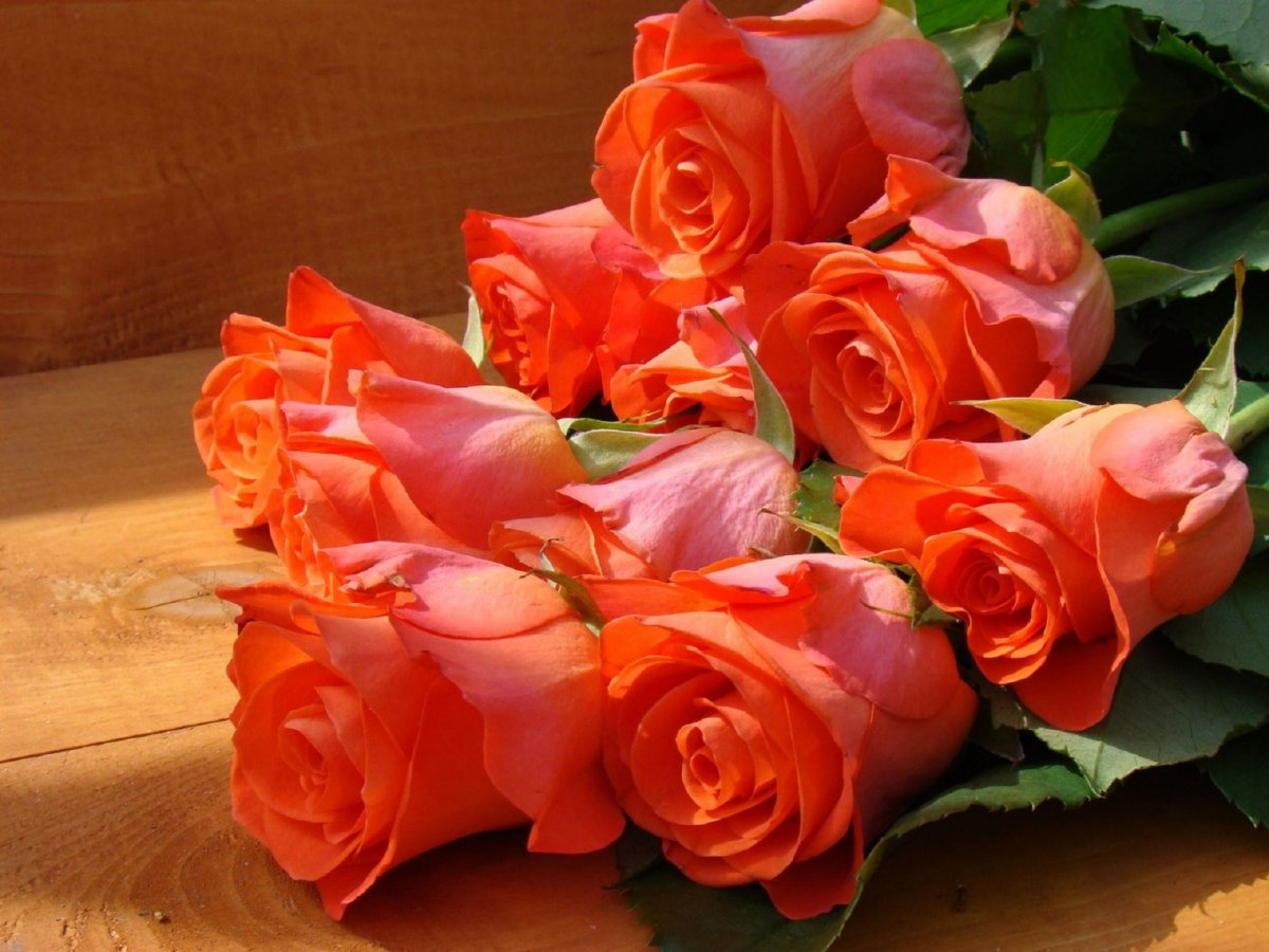 Мои подарки на день рождения спасибо всем за поздравления