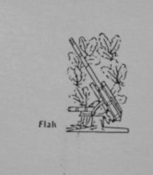 flak.png
