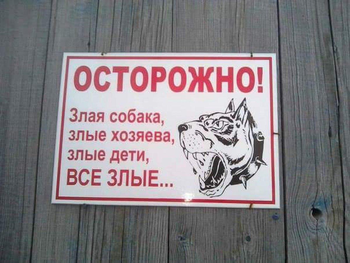 Видами севастополя, осторожно злая собака картинки прикольные