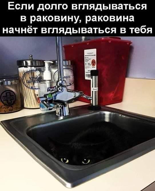 изображение_viber_2021-02-22_23-04-20.jpg