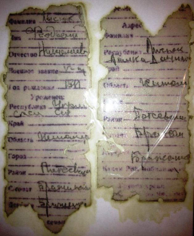 Лысюк ЛОЗ.png