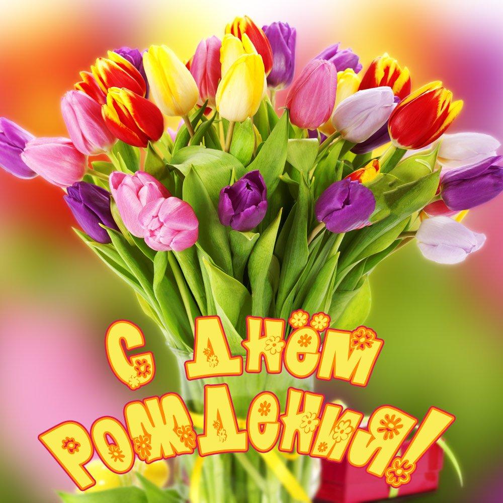Ромашками, открытка с цветами для поздравления с днем рождения