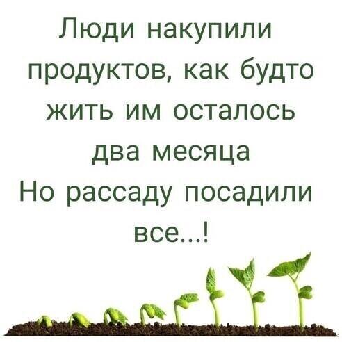 SAVE_20200331_083330.jpg