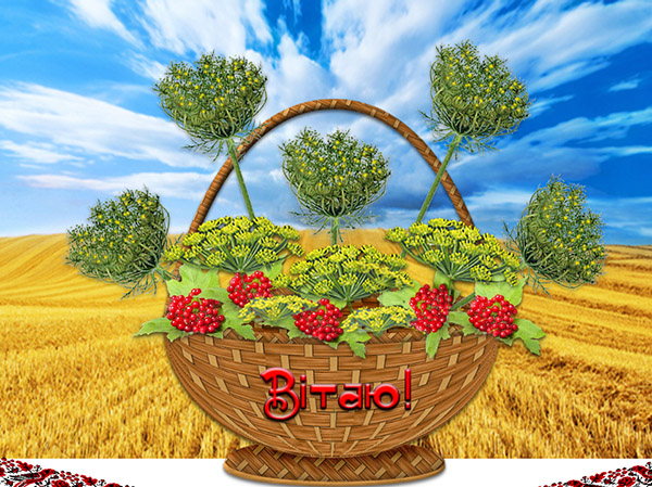 Картошка технология выращивания 83