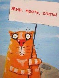 Kievliv