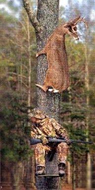 Single hunter