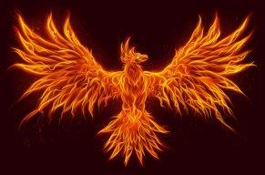 Phoenix 007