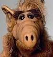 INCASSATYONS