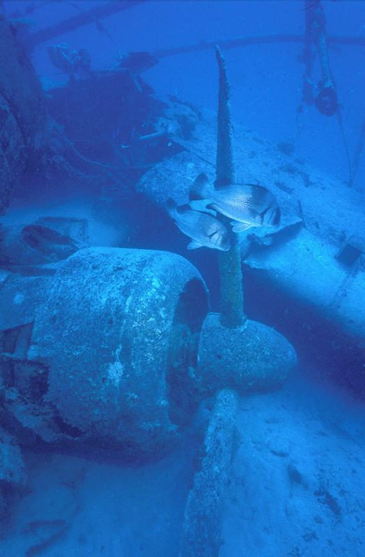 индианаполис фото затонувшего корабля земле