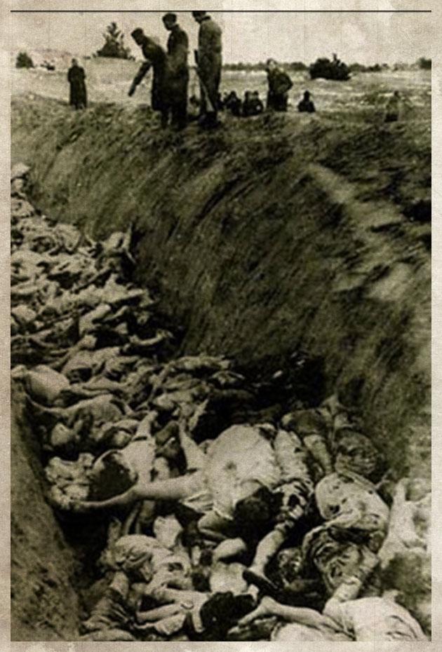 вакансии: Водитель фото детей убитых немцами держателей зарплатных